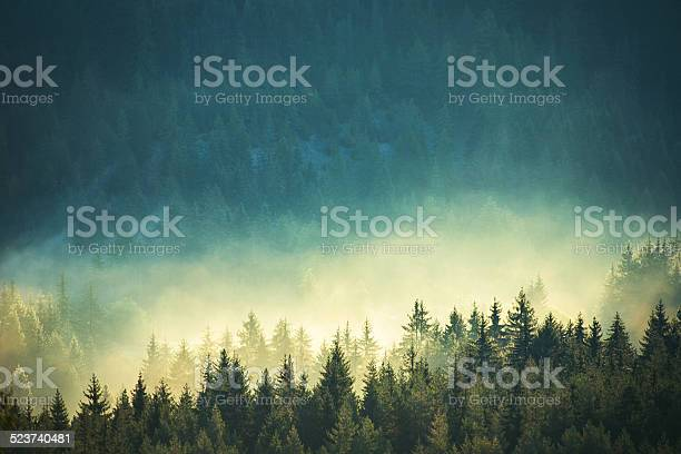 Photo of View of misty fog mountains in autumn