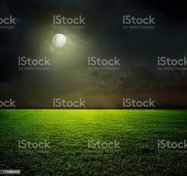 Photo of View of moonlit green field