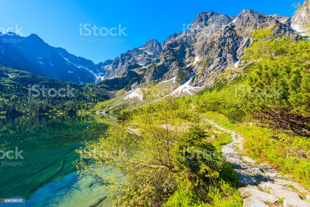 View of Morskie Oko lake with emerald green water in summer season, High Tatra Mountains, Poland stock photo