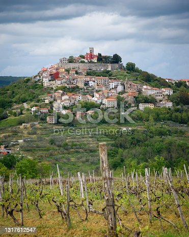 istock A view of Motovun with vineyard in foreground 1317612547