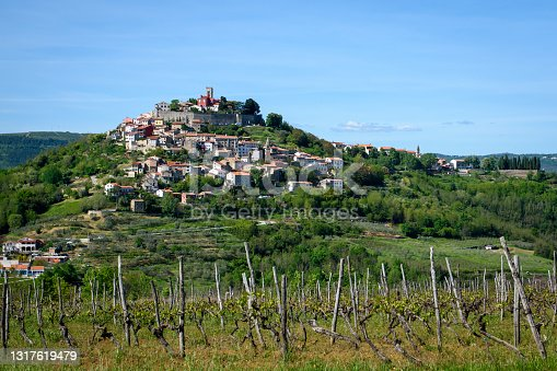 istock A view of Motovun with vineyard in foreground 1317619479
