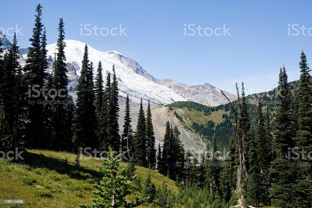 View Of Mount Rainier royalty-free stock photo