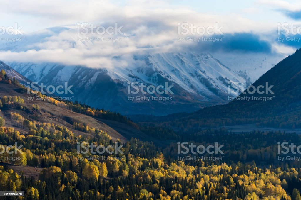 View of mountain and autumn forest in Hemu village, Xinjiang, China stock photo