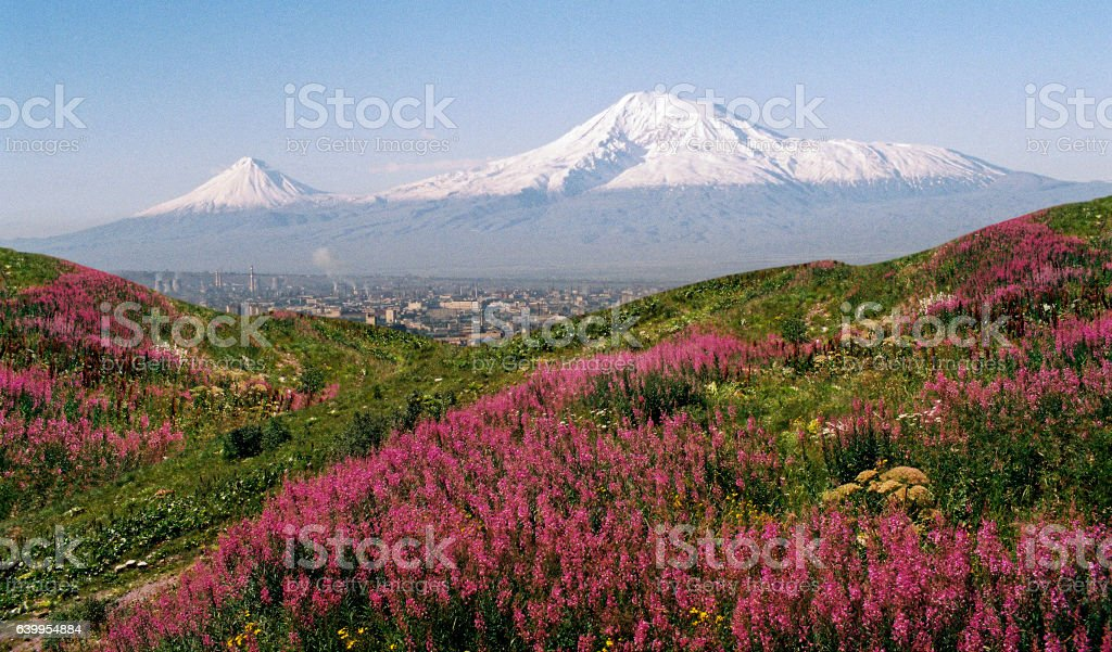View of Mountain Ararat stock photo