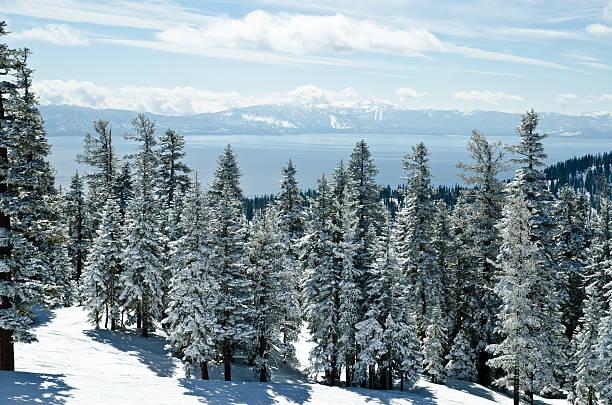 blick auf die berge von lake tahoe auf winter-tag - lake tahoe winter stock-fotos und bilder