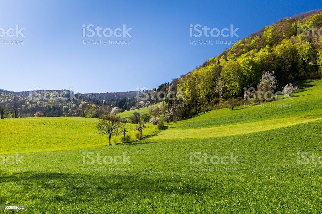 View of Mountain Wasserflueh, Switzerland stock photo