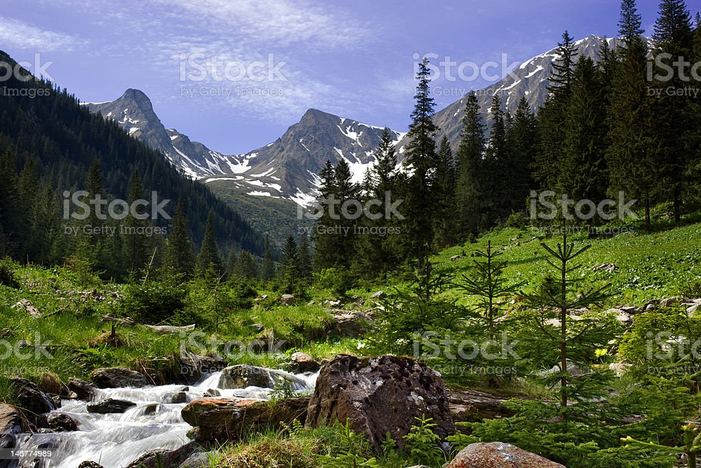 View of mountains from lush valley stock photo