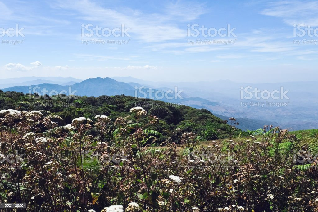 View of Mountains stock photo