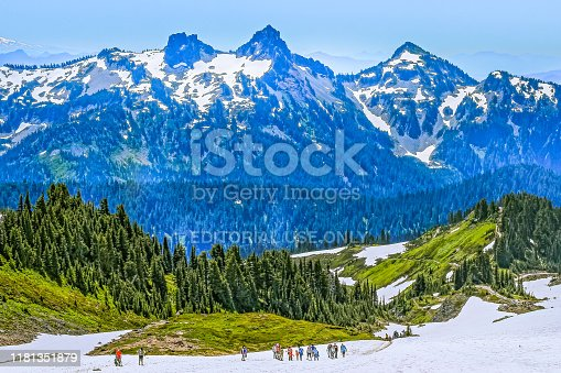 View of snow capped peaks of Mount Rainier in Mt, Rainier National Park, Washington, in summer; woods grow at foothills of the mountain; people hiking in snow on the bottom