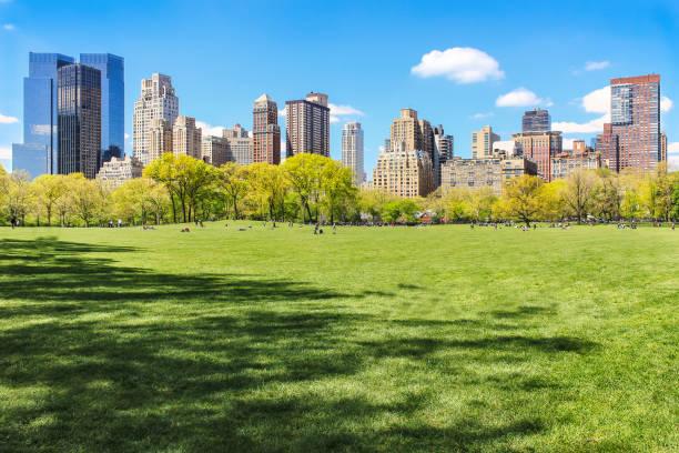 view of new york city skyline from central park - central park manhattan zdjęcia i obrazy z banku zdjęć
