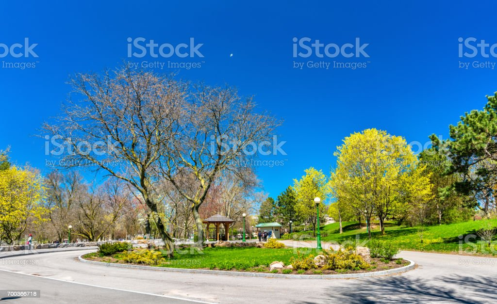 View of Niagara Falls State Park in USA stock photo