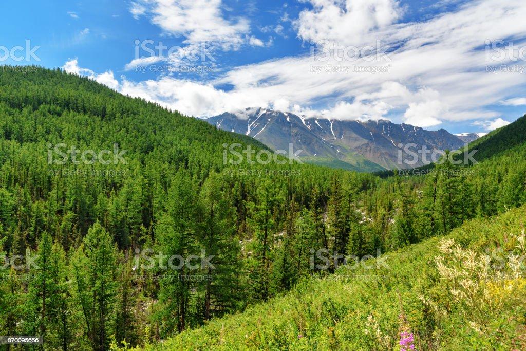 View of North-Chuiskiy Range in the clouds. Altai Republic, Russia stock photo