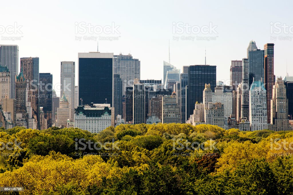 A view of NYC skyline from central park royalty-free stock photo