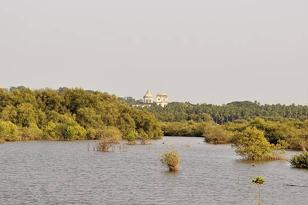 View of Old Goas churches from Divar island, India stock photo