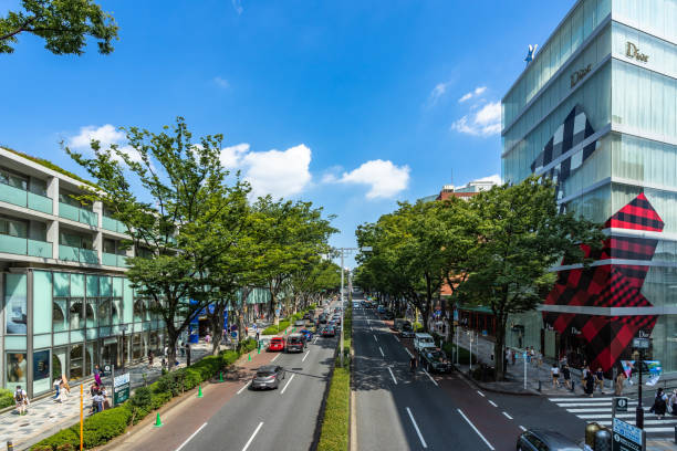 View of Omotesando street with many fashion luxury shops lined along the road stock photo