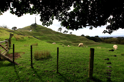 view of One Tree Hill field new zealand