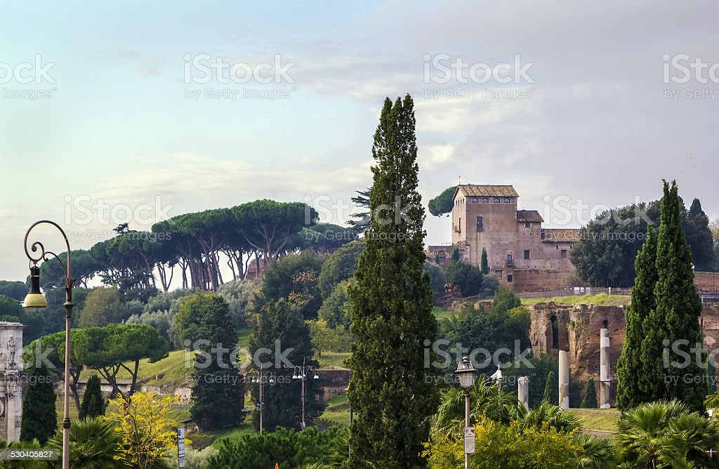 view of Palatine, Rome stock photo