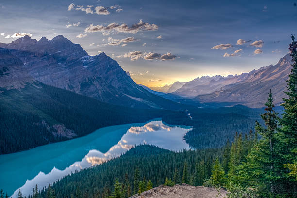 View of Peyto Lake, Jasper National Park, Canadian Rockies – Foto