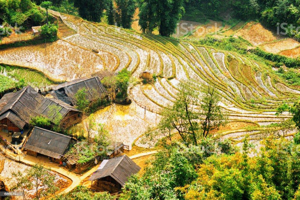 Vy över risterrasserna fylld med vatten. Tak av byn hus royaltyfri bildbanksbilder