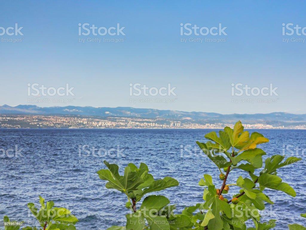 View of Rijeka at the Kvarner Bay, Croatia stock photo