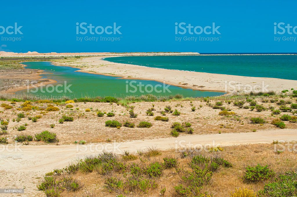 view of river delta and sea on clear day - foto de acervo