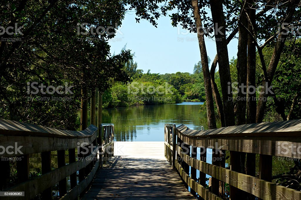 view of river from boardwalk pier stock photo