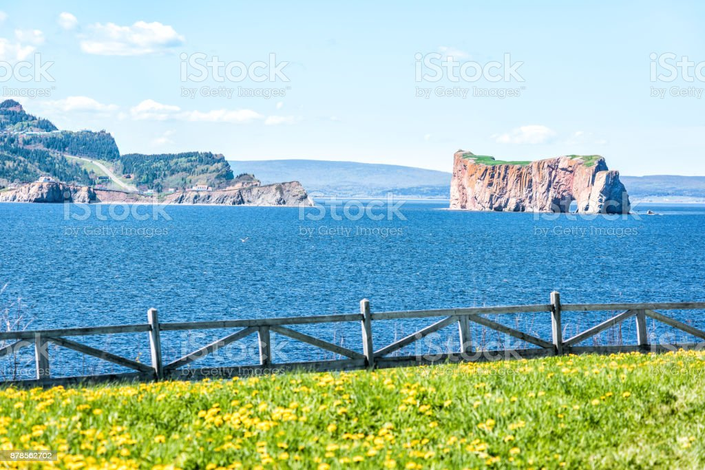 View of Rocher Perce from Bonaventure Island with ocean and gannet birds flying, cityscape skyline or coastline of city, white fence and flowers stock photo
