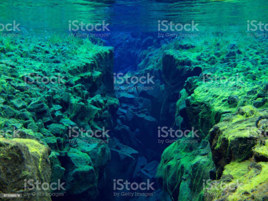 View of Rocky Divide Covered in Green Carpet Algae in Continental Split at Silfra in Shallow Section at Pingvellir National Park 3 stock photo