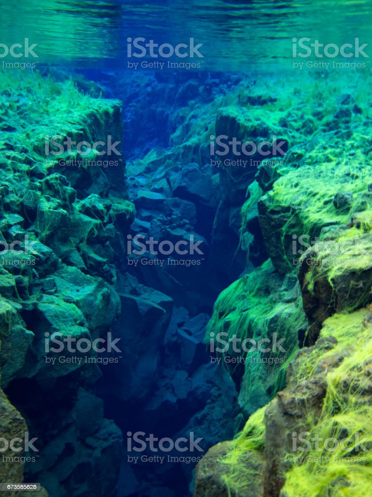 View of Rocky Divide Covered in Green Carpet Algae in Continental Split at Silfra in Shallow Section at Pingvellir National Park 4 stock photo