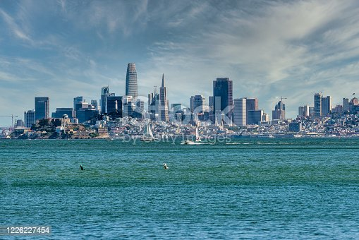 View of the San Francisco skyline across the bay . Looking at the majestic skyline from Tiburon. Sailboats and motorboats in the Bay on a sunny day with the San francisco skyline as a backdrop.