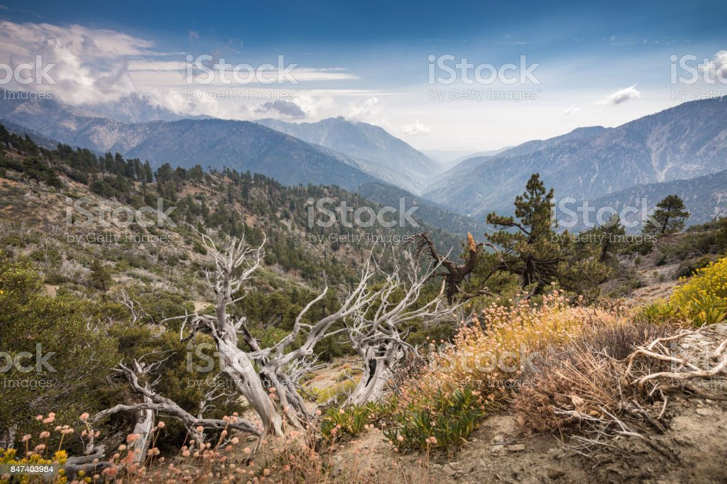 View of San Gabriel River Basin from Inspiration Point A view from Inspiration Point along the Pacific Crest Trail near the town of Wrightwood in Southern California. The view overlooks the Angeles National Forest and San Gabriel Mountains and river basin. Shot in Summer of 2017 with an ultra wide-angle lens. Angeles National Forest Stock Photo