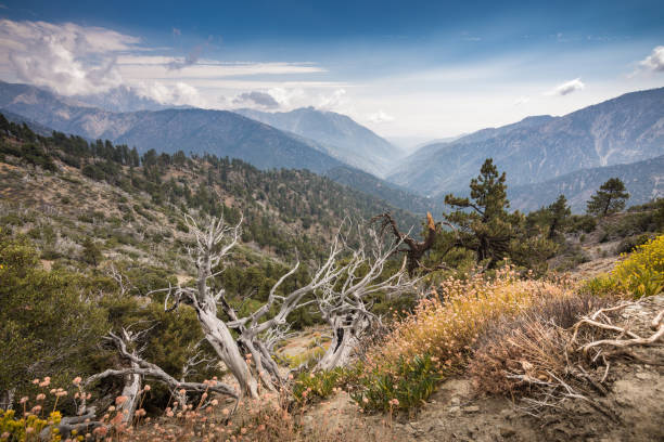 View of San Gabriel River Basin from Inspiration Point stock photo