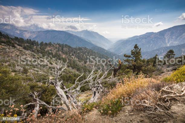 View Of San Gabriel River Basin From Inspiration Point Stock Photo - Download Image Now