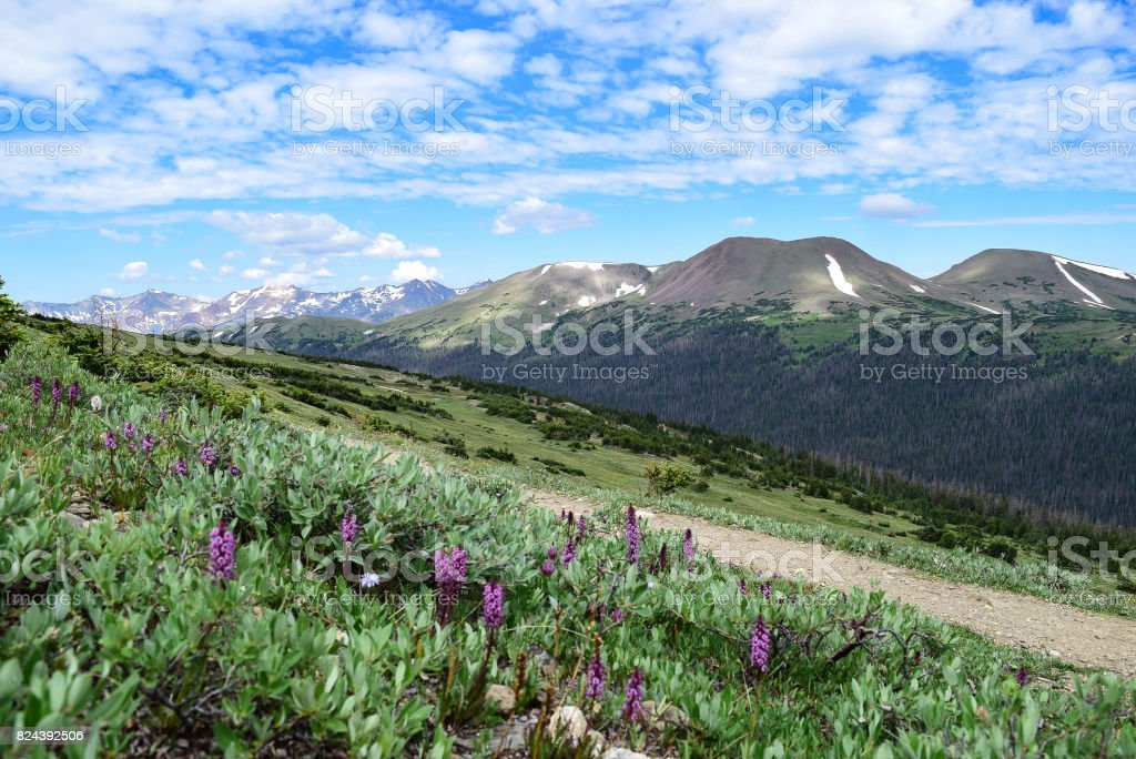 View of Sheep Mountain from the Ute Trail in Rocky Mountain National Park stock photo