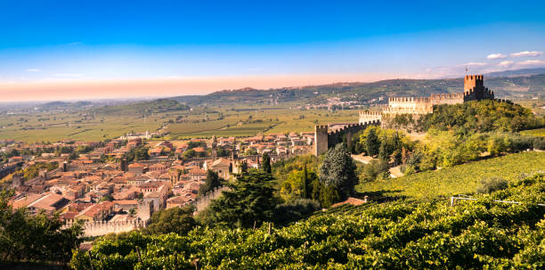 view of soave (italy) and its famous medieval castle. - venezien stock-fotos und bilder