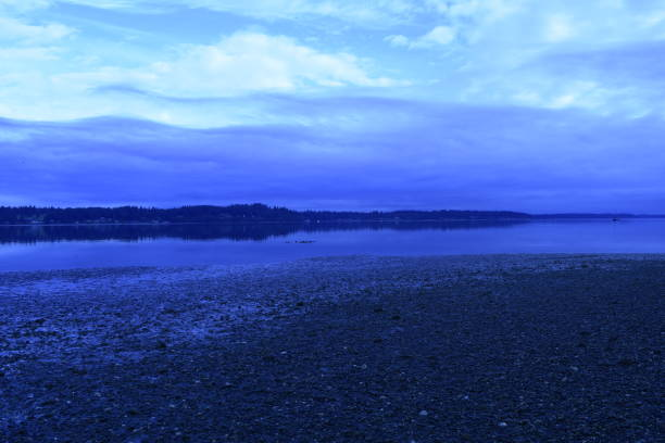 A View Of South Puget Sound During Dawn At Priest Point Park Near Olympia, Washington, USA horizon over land stock pictures, royalty-free photos & images