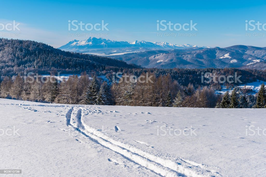 View of Tatra Mountains from ski track in winter landscape of Beskid Sadecki Mountains, Poland stock photo