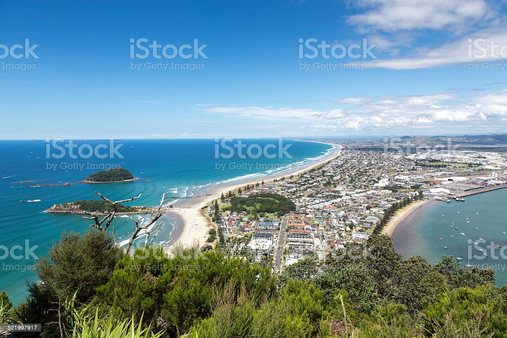 View of Tauranga stock photo