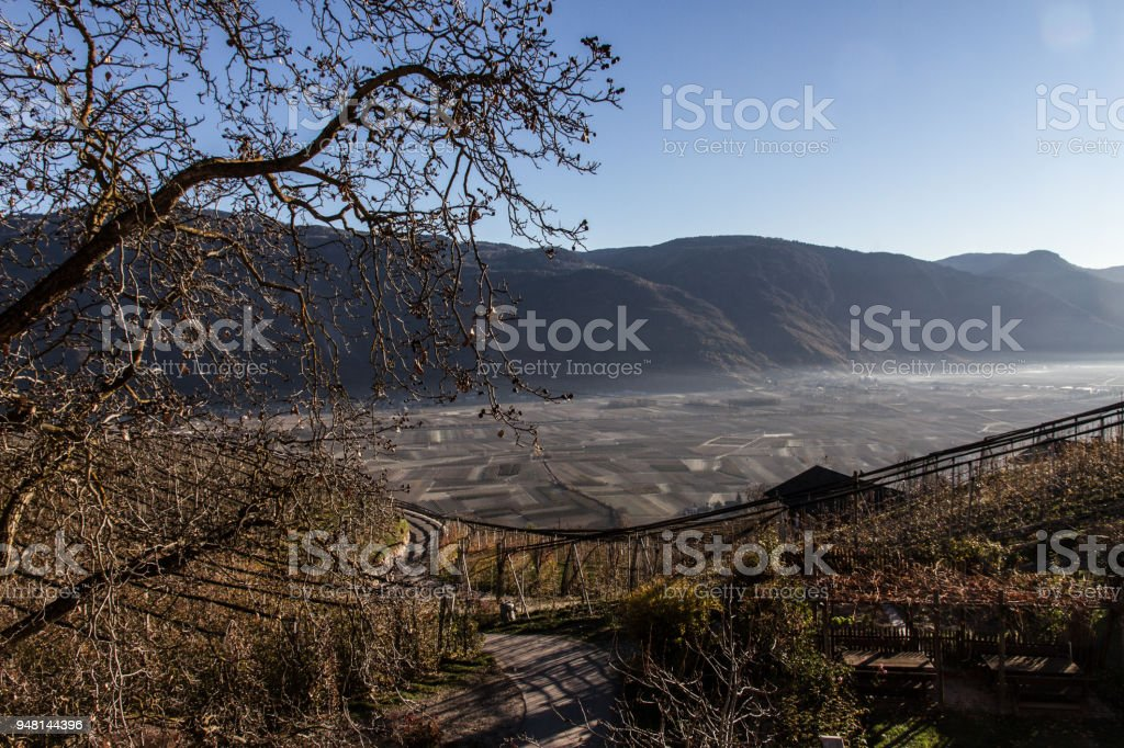 View Of The Apple Groves Of Val Di Non, Trentino Alto Adige, Italy stock photo