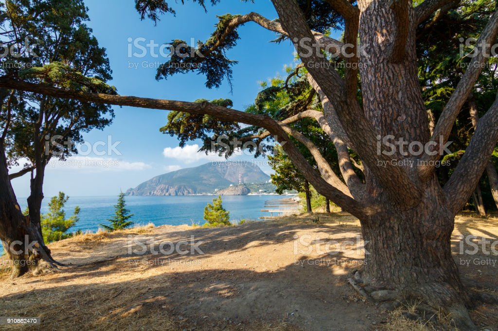 view of the Ayu-Dag mountain stock photo