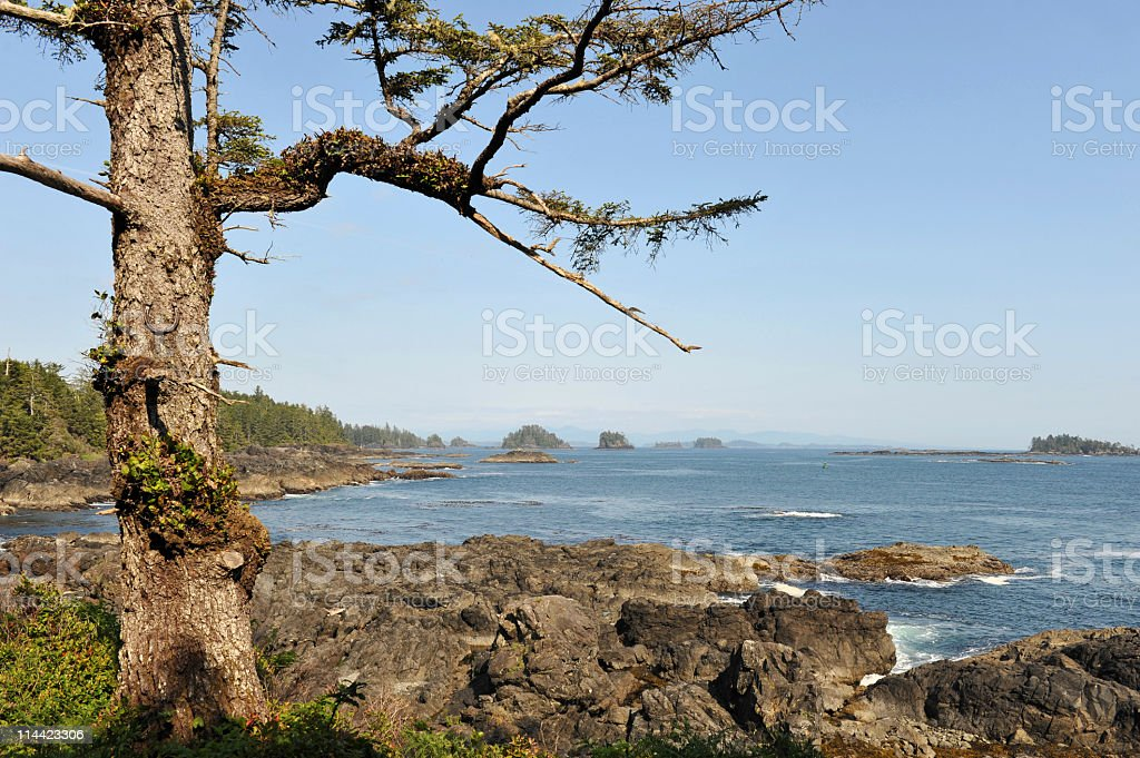 View of the Barkley Sound,Ucluelet,Vancouver Island,Canada stock photo