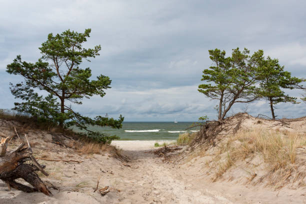 View of the beach and the Baltic Sea