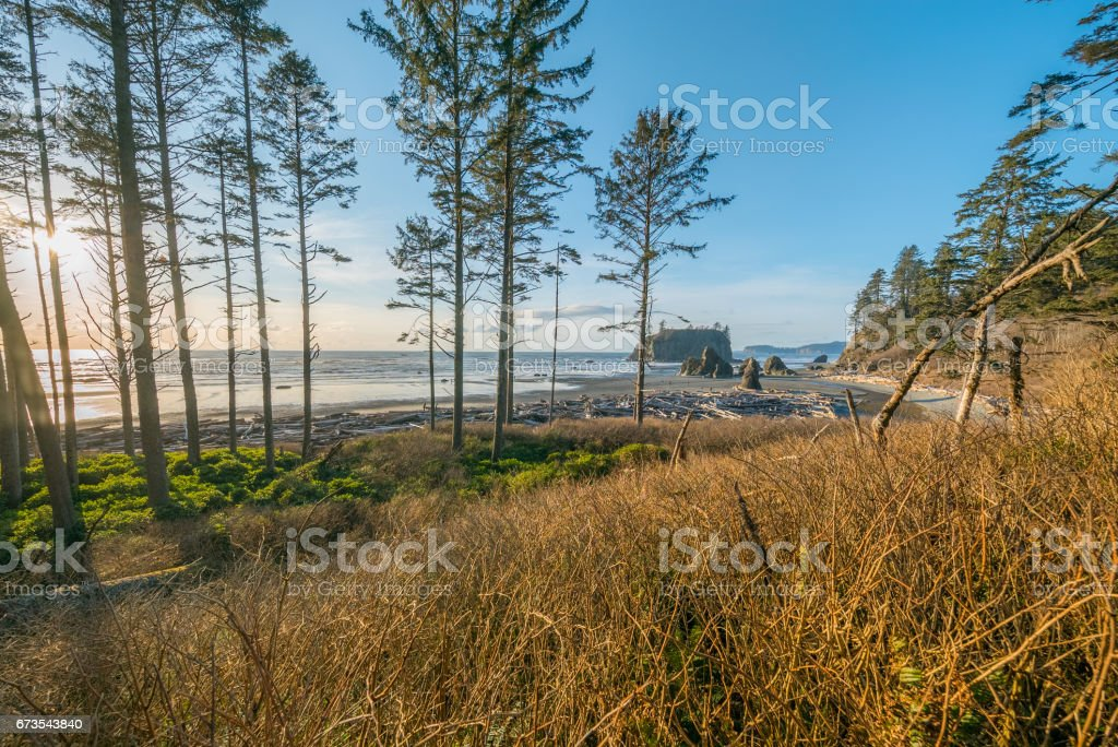 View of the beach from the cliff. Beautiful blue sea. Ruby Beach royalty-free stock photo
