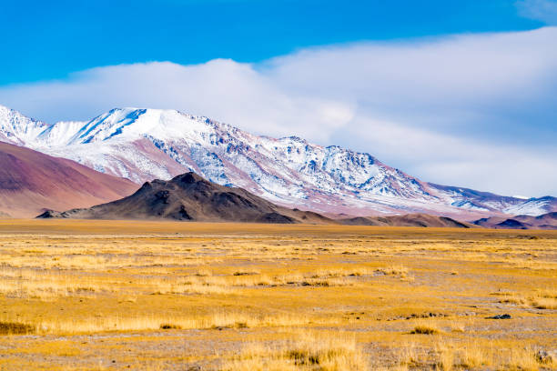 View of the beautiful mountain and the large yellow steppe in the sunny day View of the beautiful mountain and the large yellow steppe in the sunny day at Ulgii in the western Mongolia independent mongolia stock pictures, royalty-free photos & images