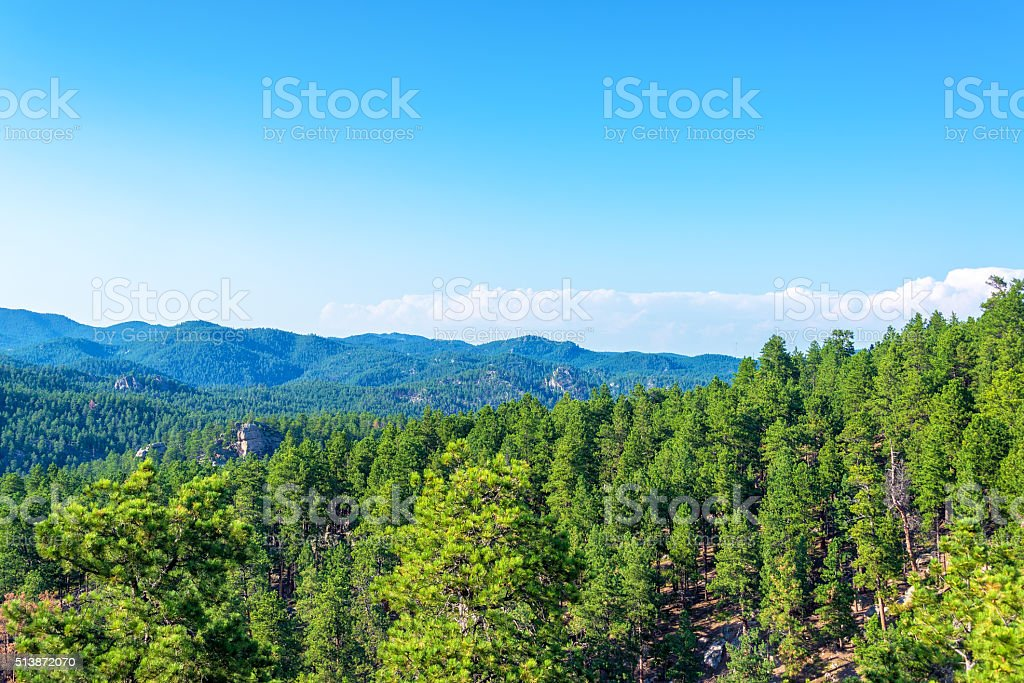 View of the Black Hills stock photo