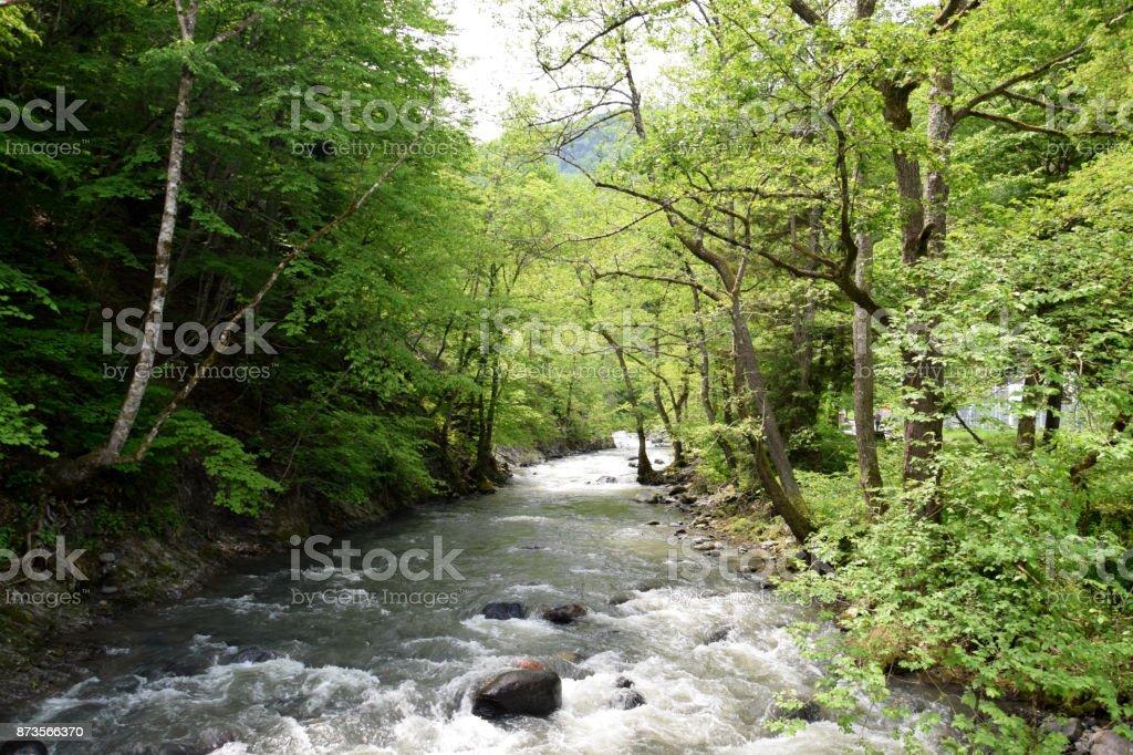 View of the Borjomula river, natural spring of the world famous Borjomi water, Georgia stock photo