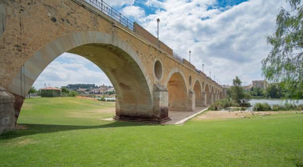 Vista del puente de palmas en Badajoz - foto de stock