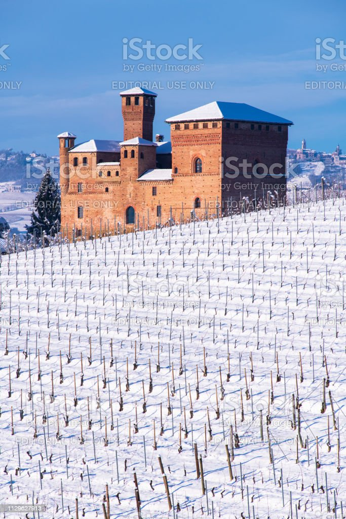 View of the Castle of Grinzane Cavour and a snowy vineyard - foto stock