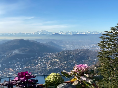 Aerial view through flowers of the city between the mountains and the lake