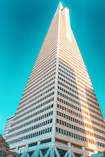 View of the city center,tower skyscraper TransAmerica, downtown of San Francisco. stock photo